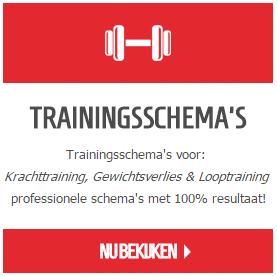 fitnessschemas - fitness schema